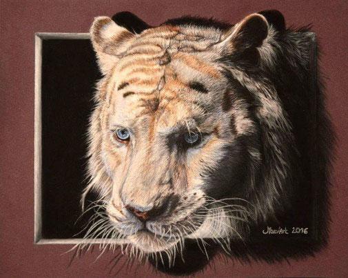 Portrait de tigre blanc aux pastels secs