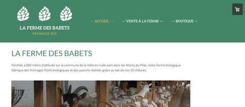 capture d'écran du site de la Ferme des Babets