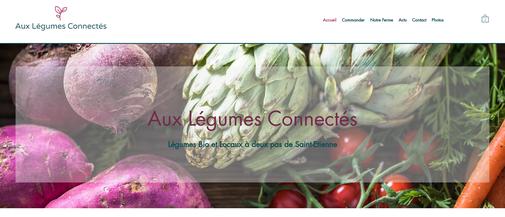 Page d'accueil du site Aux Légumes Connectés