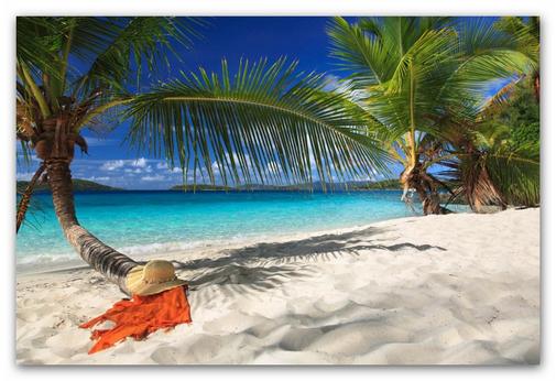 Isla Saona Ausflug bei Singlereisen Karibik