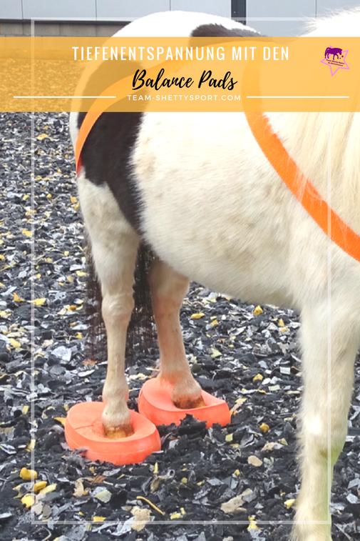 Pferdetraining mit Balancepads. Stabilitätstrainer