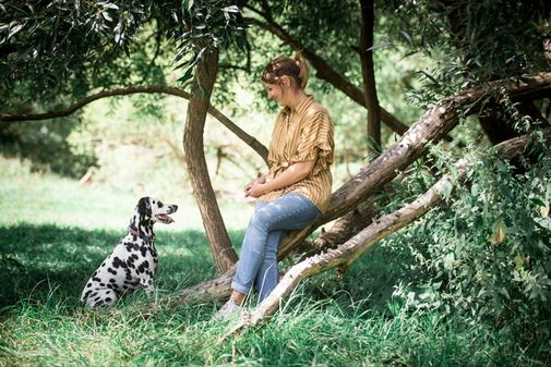 Hundsoadli Dalmatiner
