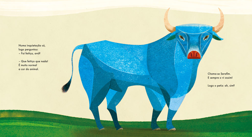 kinderbuch o toiro azul