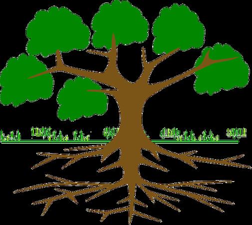 optimiser la qualité des sols et son irrigation pour des cultures de qualité avec agralis