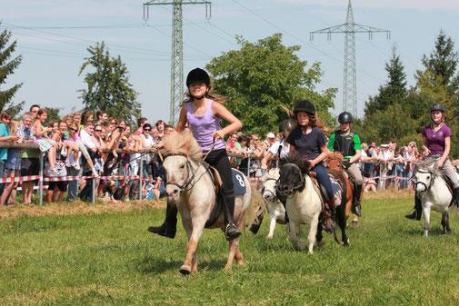 Ponyrennen bis 105 ccm Stockmass 2012