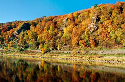 Hannoversche Klippen im Herbst © Kulturland Kreis Höxter