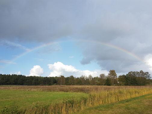 Regenbogen über unserem Feld