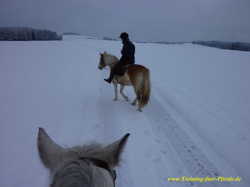 Winterausritt, vielen Dank für das Foto :-)