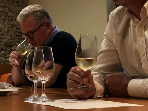 degustation-vin-club-oenologie-Touraine-Val-de-Loire-Amboise-Vouvray-Tours-Rendez-Vous-dans-les-Vignes