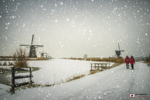 Snow is Falling (Kinderdijk, januari 2019)