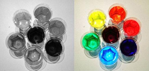 Comparaison photos en noir et blanc et en couleurs