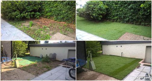 Vorher nachher bilder baumpflegethiedes webseite for Gartengestaltung 20 qm