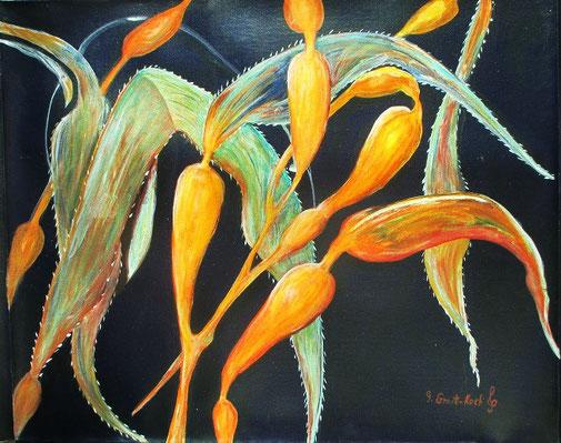 1. Bull kelp,  Acrylic and ink on canvas     50 x 60 cm     2018