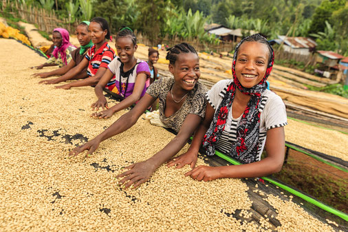 GIZ AgriChains aims at improving the sustainability of agricultural supply chains, e.g.in coffee cultivation in Ethiopia