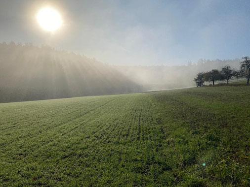 Fachpraxis AngstfreiAtmen Idstein im Taunus / Hessen | Behandlungs-Schwerpunkte
