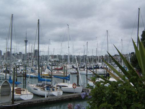 Westhaven Marina est la plus grande et la plus ancienne de NZ