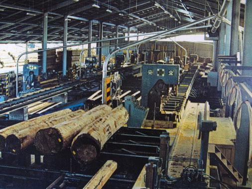 昭和46年誕生の製材工場