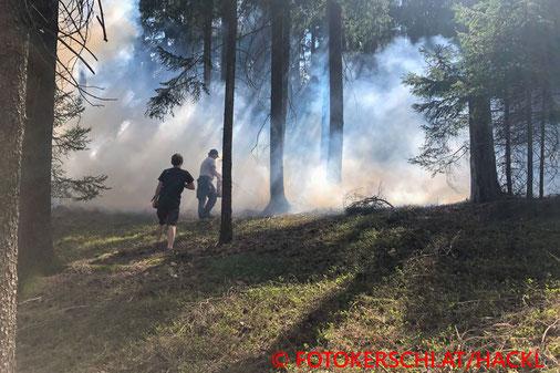 Feuerwehr; Blaulicht; Fotokerschi.at; Brand; Wald; Anrainer; verhindert; Lasberg;