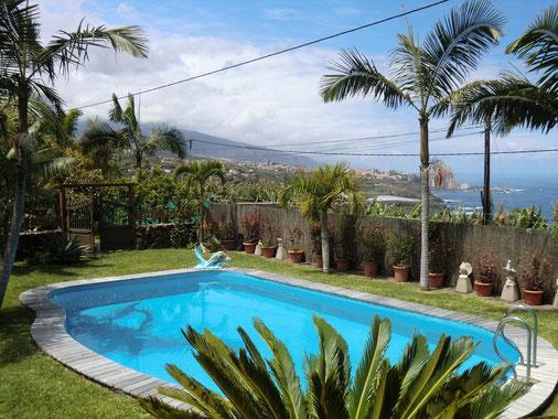 Bild: Pool im Garten der Ferien - Finca in Puerto de la Cruz