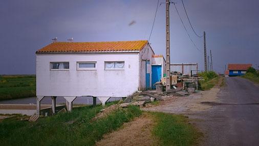 Huîtres Moissenot cabane de travail sur la commune de Hiers Brouage