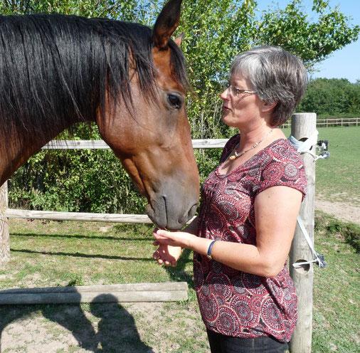La mise à jour de vos fonctionnements pendant les séances de psychothérapie avec le cheval vous permet de cheminer vers le mieux-être.