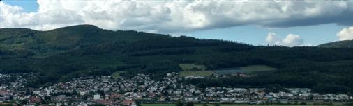 Homberg Wald, Wangen bei Olten
