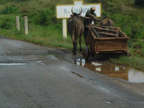 sur les routes de Morondava
