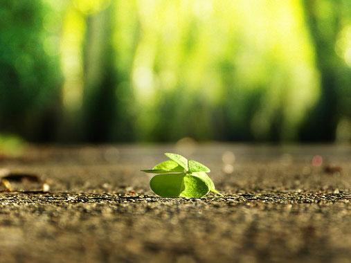 Finde das Glück - eine wunderschöne Übung, die Dir an schlechten Tagen dabei hilft, Deinen Fokus wieder auf das Gute zu richten.