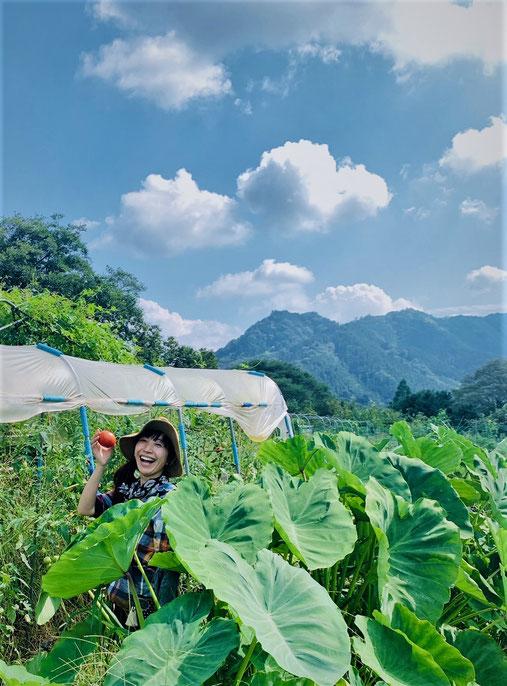 自然農法の野菜作り教室@さとやま農学校・すどう農園