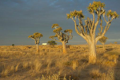 Übernachtungsplatz Namibia