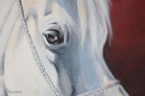Pferd Portrait, realistisch Augen malen,