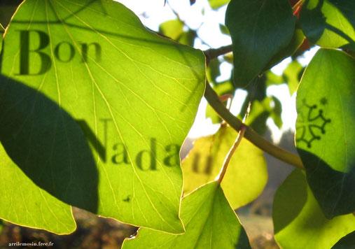 Carta per la Nadau 2014