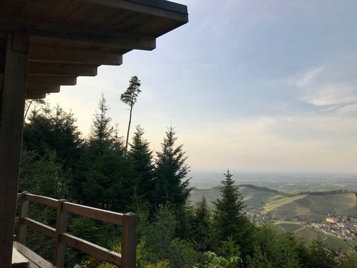 Schutzhütte Heidenknie auf der Schwarzwaldwanderung Durbacher Weitblick