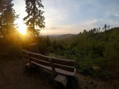 Bank bei Sonnenuntergang im Wald auf Schwarzwaldwanderung