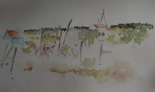 Panorama sur les marais