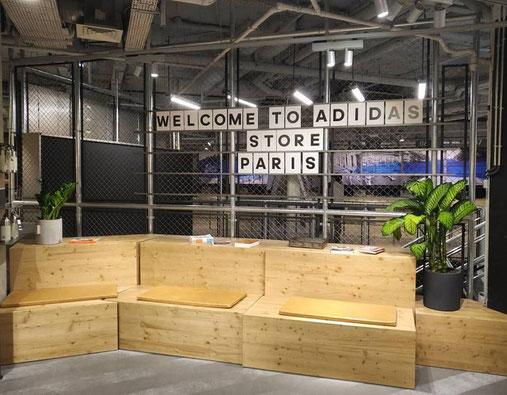 Paysagiste d'intérieur à Paris: location et entretien de plantes en entreprise