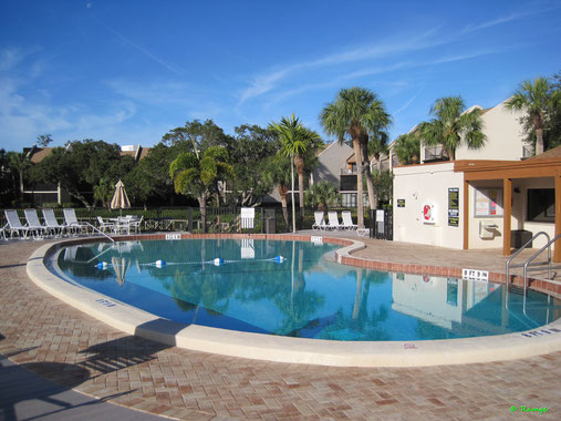 Siesta Key Beautiful Vacation Rental - Ferienwohnung - Midnight Cove II - Heated Pool
