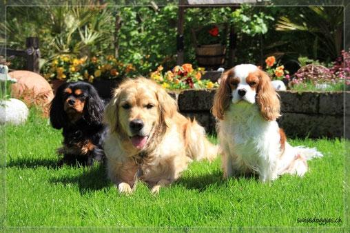 Ok, noch ein Gruppenfoto im Garten... - wir beide ziemlich geschafft, gäu Jucy...