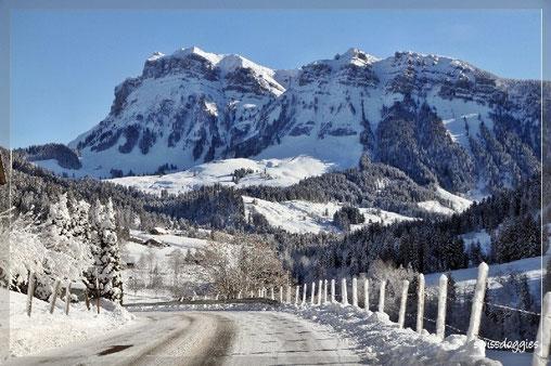Fahrt durch eine Märchenwelt - frisch verschneit, bitterkalt und Sonne: herrlich!