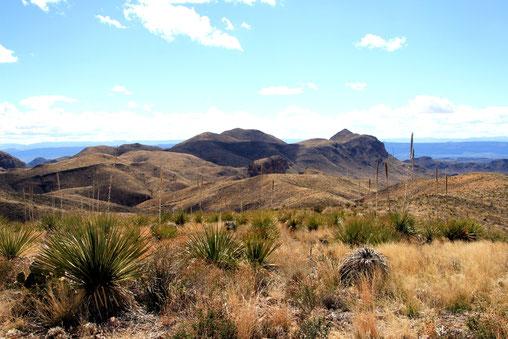 Ross Maxwell Scenic Drive: Sotol Vista Overlook