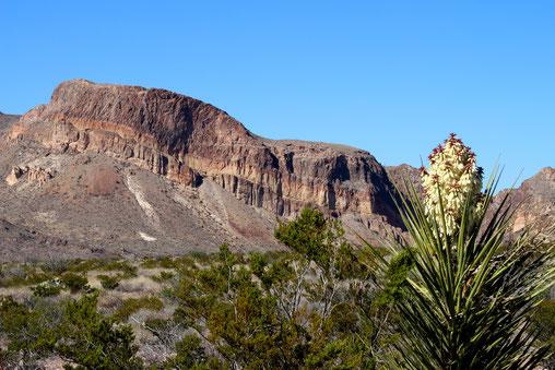 Ross Maxwell Scenic Drive: Burro Mesa