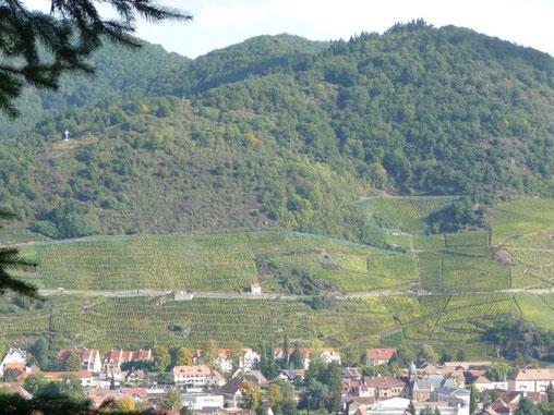 Le voble du Rangen avec la ville de Thann en contrebas