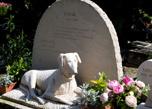 »Friedhof für Hunde und andere Haustiere«, Paris