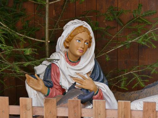 Wanderung um Wasserburg und Besuch des Christkindlmarktes