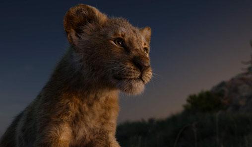 Der König der Löwen 2019 Remake Film Review FANwerk Deutsch Kritik Rezension Simba