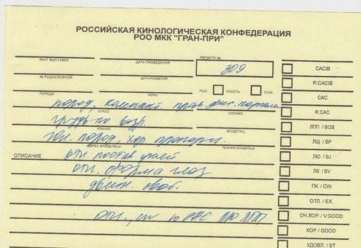 Лутшиший Юниор,Лутший Представитель CAC Jun  Породы эксперт Чайковская