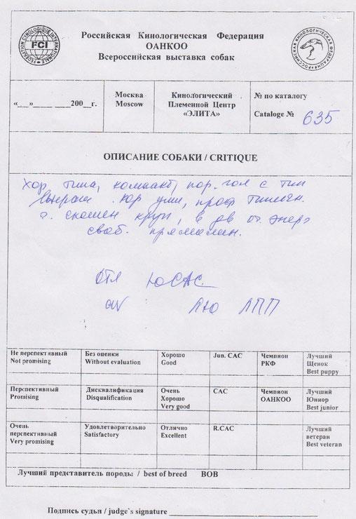 Лутший Юниор, Лутший Представитель ПородыCAC Jun эксперт Никитина