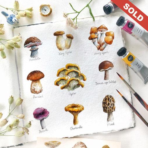 """Mushroom Gallery"" CHF 180.00"