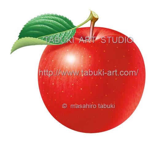 リンゴ丸 RD10624