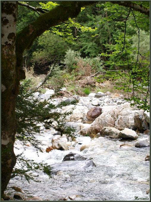 Le Gave d'Ossau entre les Eaux-Chaudes et Gabas, Vallée d'Ossau (64)